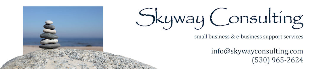 Skyway Consulting: your home- and e-business support team